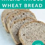 no knead bread pin 1