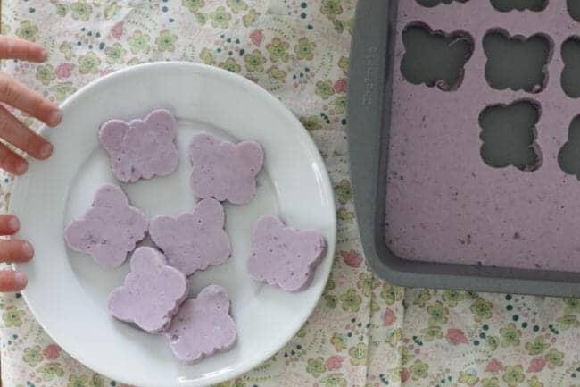 Blueberry Yogurt Homemade Gummies