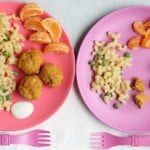 chicken-meatballs-with-sweet-potatoes-on-two-plates