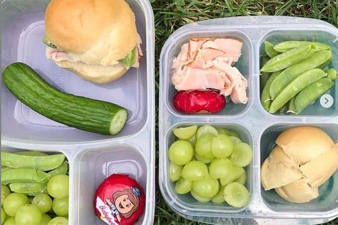 sandwich lunches for kids in bento boxes