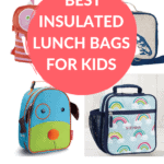 lunch bags pin 1
