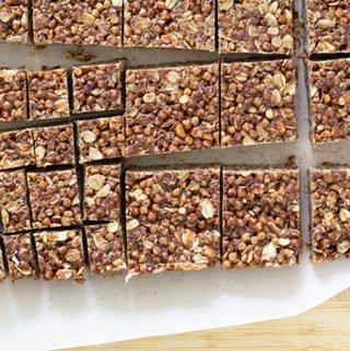 sliced chocolate peanut butter bars
