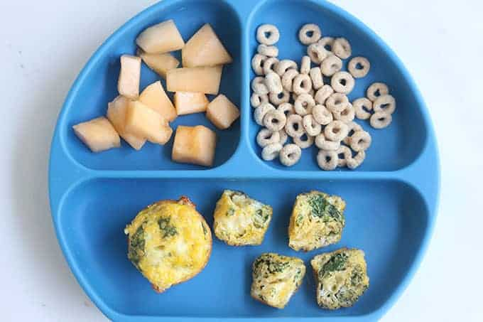 spinach-egg-muffins-on-blue-divided-plate