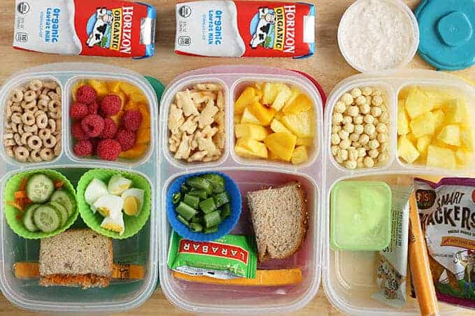 3 toddler lunch ideas in lunchboxes with containers of milk and yogurt