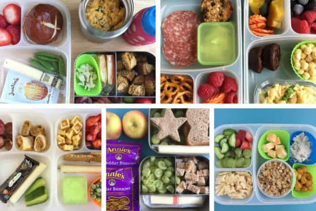 15 Toddler Lunch Ideas for Daycare (No Reheating Required)