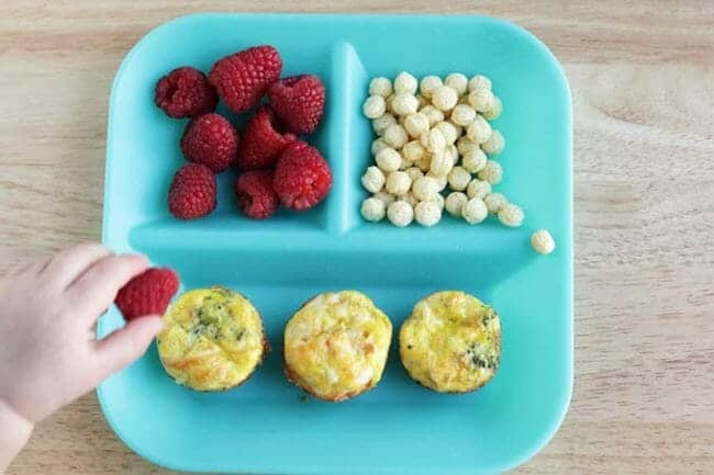 mini egg muffins with veggies