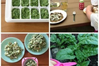 5 Ways to Make Spinach Pesto