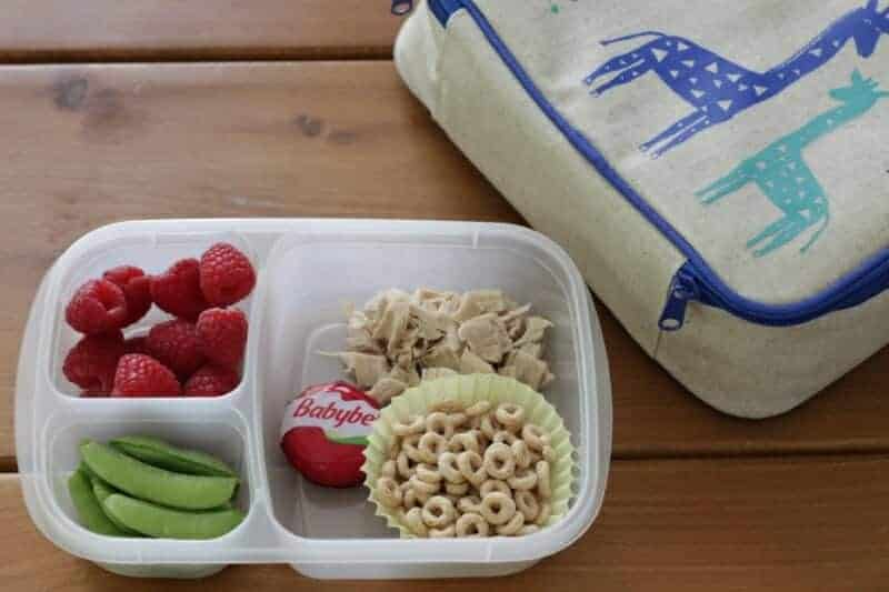 Yummy Toddler Lunch: Chicken, Cheese, Raspberries, and More