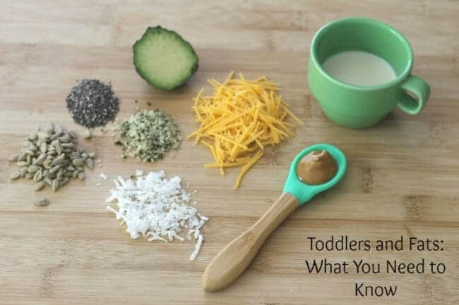 Try These Healthy Fat Foods for Toddlers