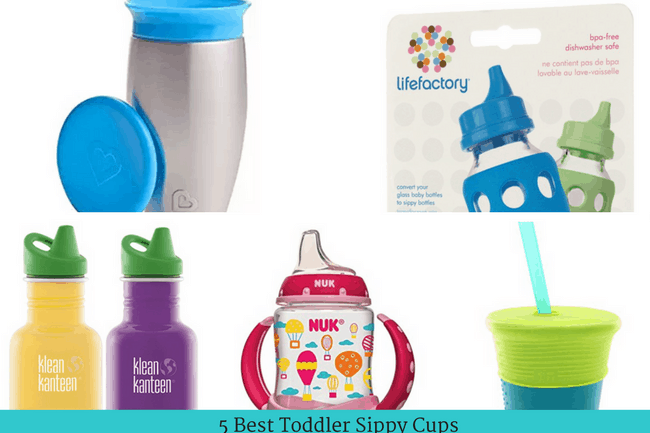 Best Sippy Cups for Toddlers (Updated 2018)