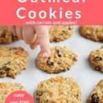healthy oatmeal cookies pin 1
