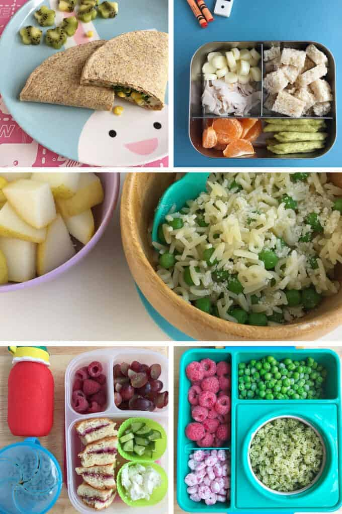 Toddler lunches with pasta, quesadillas, and sandwiches