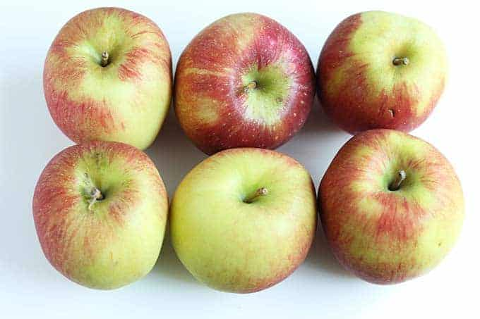 apples for crockpot applesauce