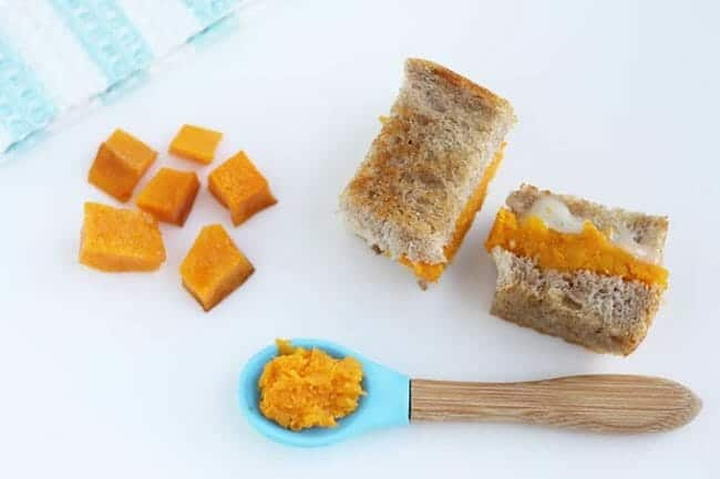 mashed butternut squash baby food