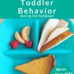 holiday behavior pin