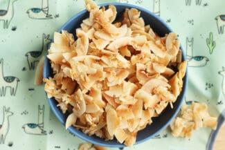 Copycat Dang Coconut Chips