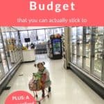 food budget podcast pin