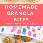 granola bites pin 1
