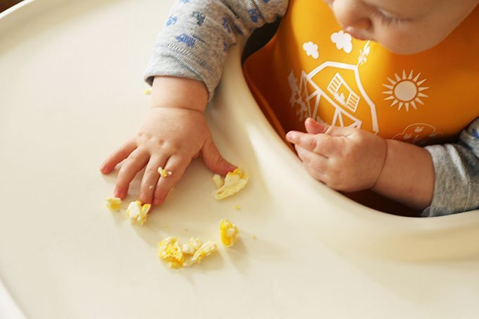 baby in high chair eating eggs with hands