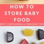 baby food storage pin 1
