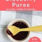 blueberry puree pin