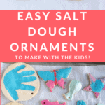 salt dough pin 2