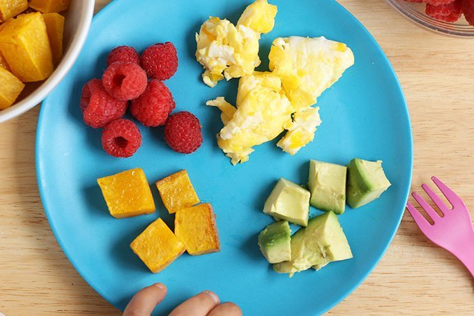 child-plate-with-avocado,-squash,-eggs-and-berries