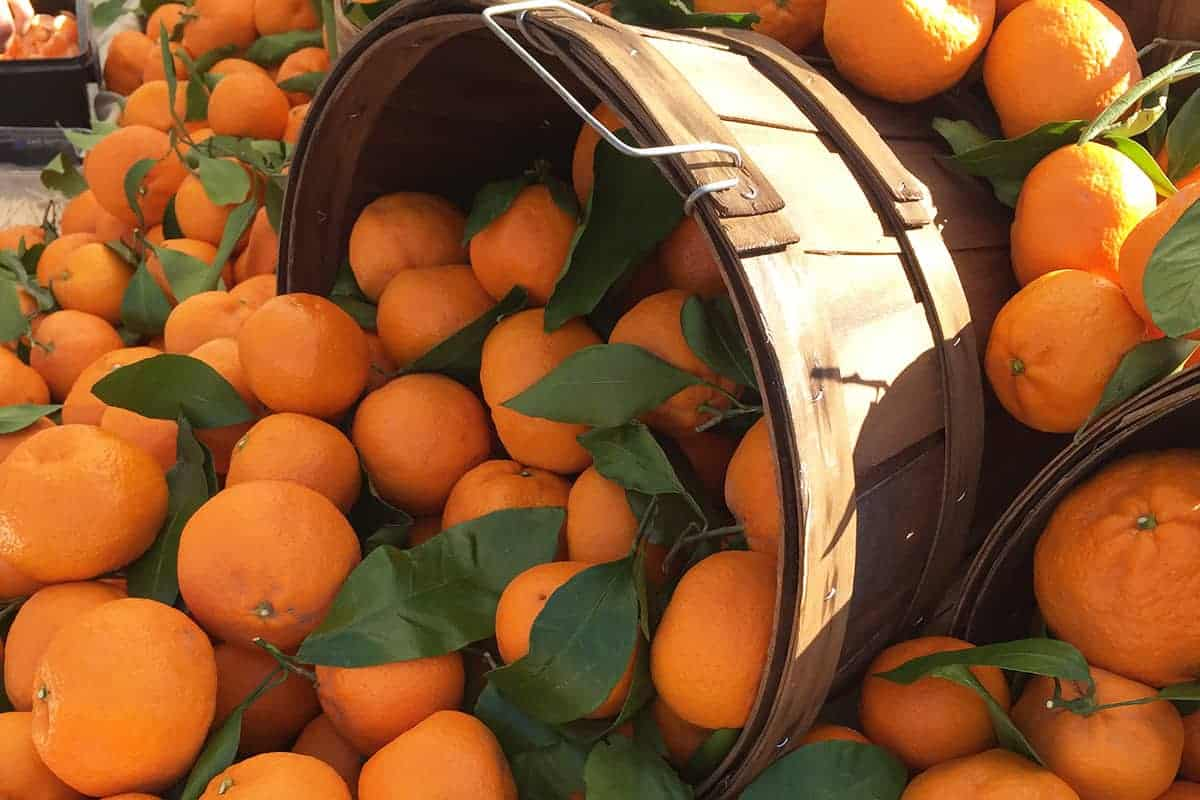 clementines-spilling-from-bucket-at-market