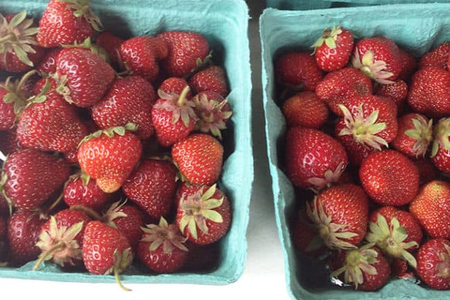 local-strawberries-in-containers