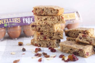 Trail Mix Breakfast Bars with Oatmeal