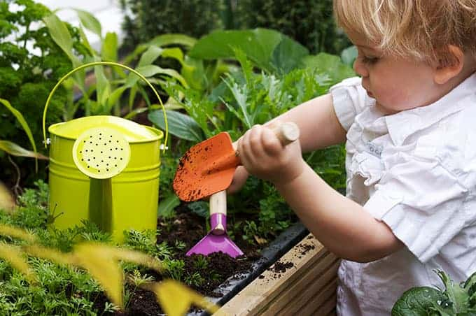 toddler-with-garden-tools