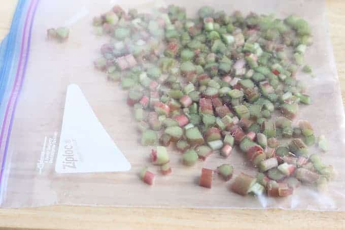 rhubarb in plastic bag