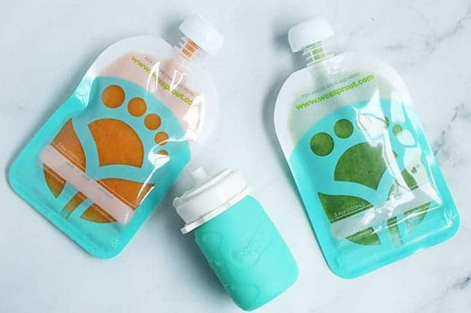 baby-food-pouches-with-homemade-baby-food