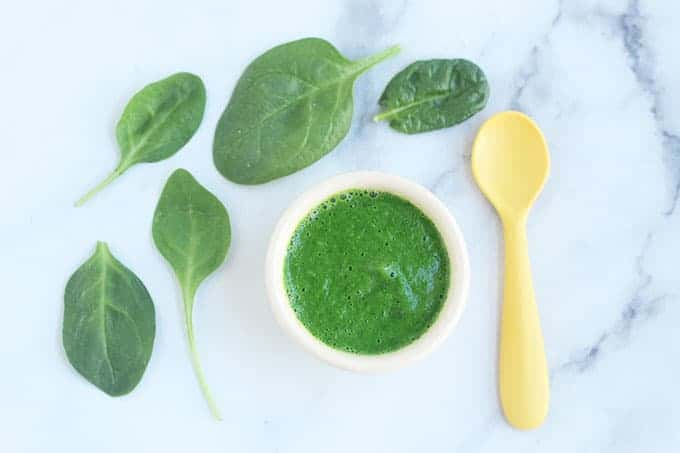 spinach-puree-in-white-bowl