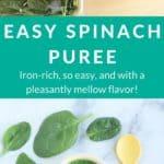 spinach puree pin 1