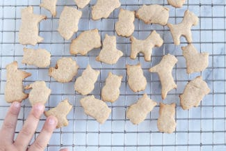 Easiest Animal Crackers Recipe
