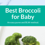 broccoli puree pin 2