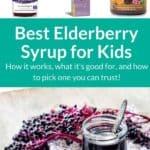 elderberry syrup pin