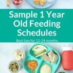 1 year old feeding schedules pin