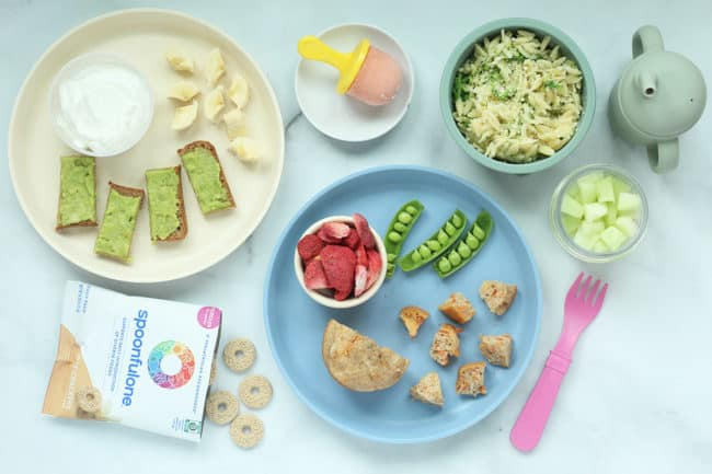 sample day of baby food on counter